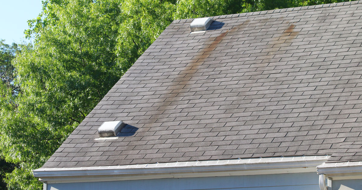 Common signs you need roof repair for your Charlotte house