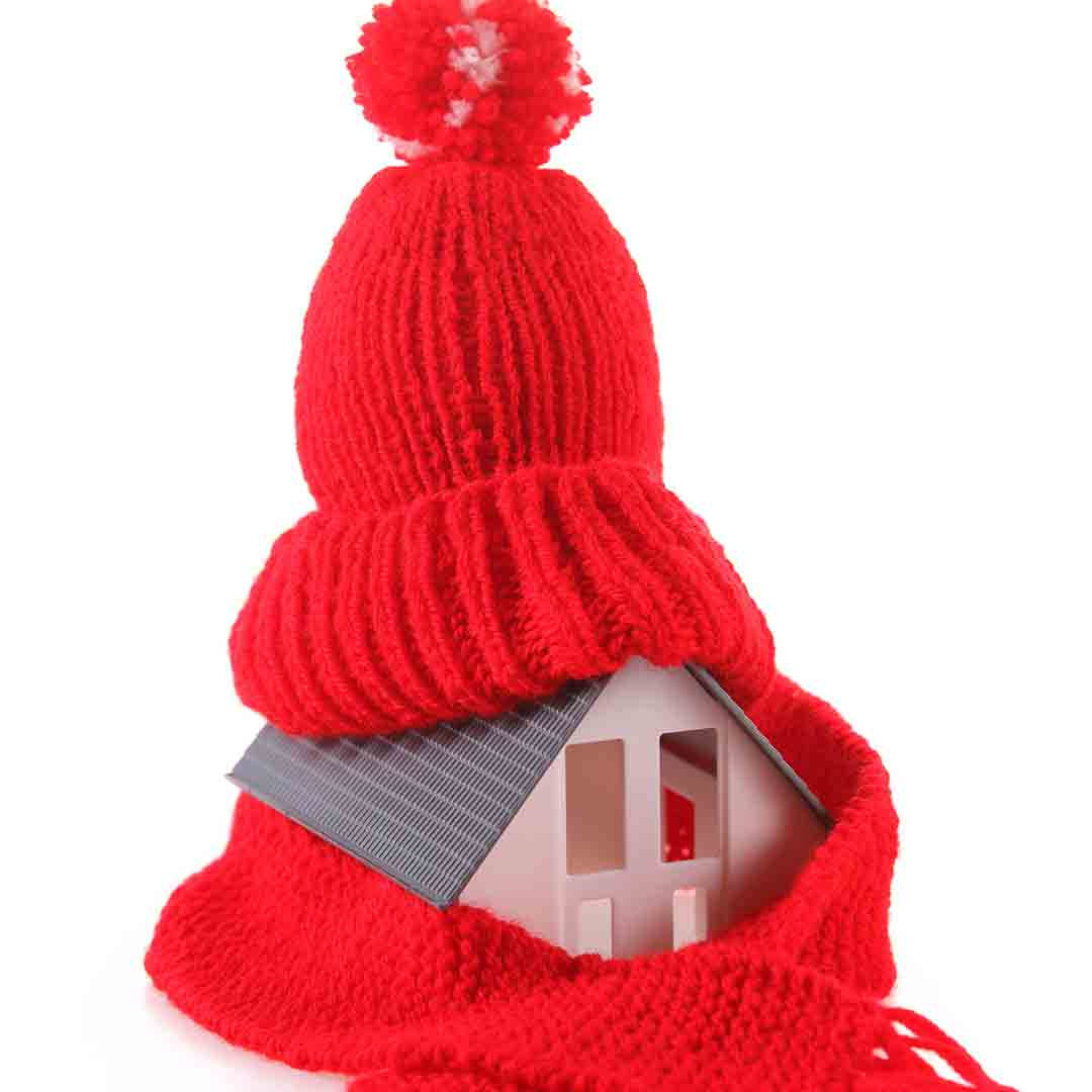 house wearing hat and scarf
